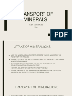 Transport of Minerals