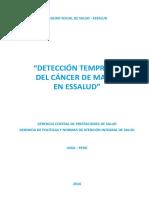 DIREC_DETECCION_TEMP_CANCER_MAMA ESSALUD CONCEPTOS.pdf