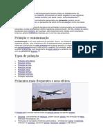 poluição - Cópia.docx