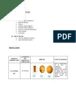 INFORME NRO 3.docx