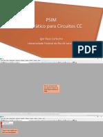 PSIM - Guia Prático
