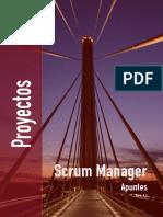 apuntes_como_gestionar_proyectos.pdf