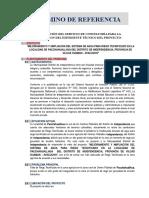 Tdr Expediente Riego Tecnificado - Independencia - 2019 - i
