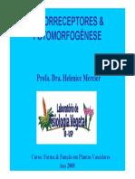 Fotorreceptores e Morfogenese_parte1
