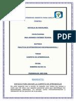 CARPETA DE ROSARIO. (2).docx
