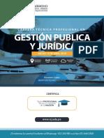 Carrera Profesional Gestión Publica Icj