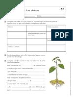 CNaturales 5 primaria-2.pdf