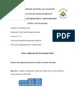 Trabajo de Perinatología.docx