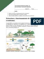 Estructura y funcionamiento de los ecosistemas. Biología G. 7°