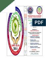 Grupo 3 MSA 144 PUEBLOS INDIGENAS ORIGINARIOS CAMPESINOS.docx