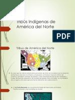 Tribus Indígenas de América del Norte-1.pptx