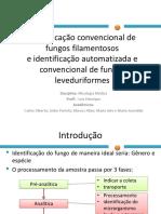 Identificao Convencional de Fungos Filamentosos1-121209122934-Phpapp02