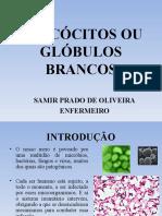 slide2-aula2leuccitos-090411135948-phpapp02.pdf