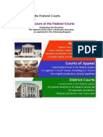 Structure of the Federal Courts.docx