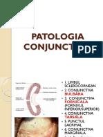 PATOLOGIA CONJUNCTIVEI.pptx