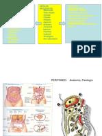 Presentación peritoneo.ppt