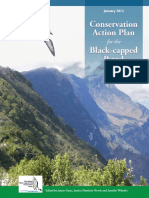 Conservation action plan for the Black-capped Petrel (Pterodroma hasitata)