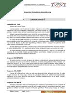 Curriculum Joaquin Iturra