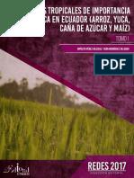 CultivosTropicalesDeImportanciaEconomica.pdf