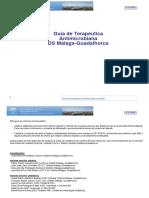 GTA DS Malaga Guadalhorce v7.3.pdf