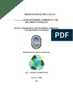 UNIVERSIDAD NACIONAL DEL CALLAO informe analisis quimico 1.docx