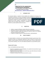 INFORME VERTEDEROS.docx