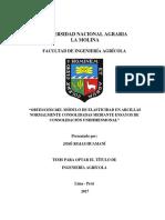 rojas-huamani-jose.pdf