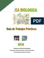 GuiaTP QuimBiol 2019.pdf