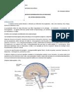 diagnostico-microbiologico-2.docx