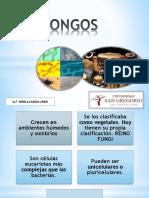 hongos2-151012154058-lva1-app6892.pdf