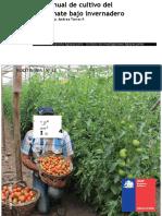 12 Manual de Tomate Invernadero.docx
