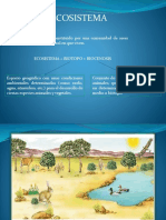 Clases de Regiones,Cuencas, Impacto Ambiental