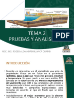 TEMA 2 - Pruebas Y Analisis PVT Del Gas Natural UDABOL
