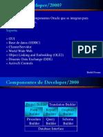 developer2000.ppt