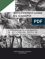 REFLEXIONES_CAMPO_INTERNET.pdf