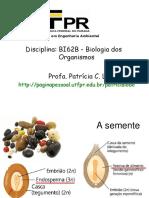 Bi62b Germ Folha