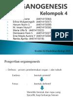 Organogenesis_Kelompok 4