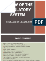 REVIEW OF THE CIRCULATORY SYSTEM.pptx