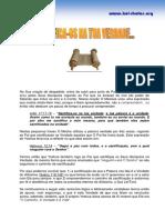 416_SANTIFICA-OS NA TUA VERDADE.pdf