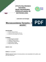 Reporte Microecosistema.docx