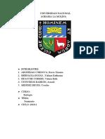 informe de Biologia.pdf