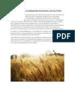 EFECTOS DE LA RADIACION SOLAR EN LOS CULTIVOS.docx