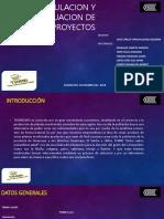 FORMULACION Y EVALUACION DE PROYECTOS.pptx