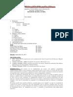 1-el-ensayo-INFORME-DE-RELATORIA-1-copia.docx