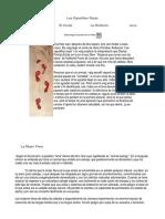 Las zapatillas rojas pdf