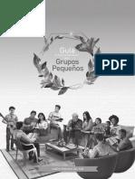 GUIA GRUPOS PEQUEÑOS UPS.pdf