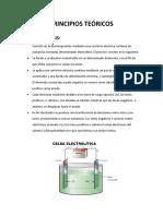 PRINCIPIOS TEÓRICOS10.docx