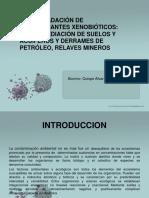 Biodegradacion de Contaminantes Xenobioticos