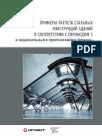 Primery Rascheta Stalnyih Konstruktsiy Zdaniy v Sootvetstvii s Evrokodom3