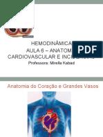 #6 - Anatomia Cardiovascular e Incidências